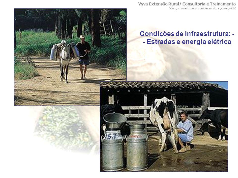 Condições de infraestrutura: - - Estradas e energia elétrica Vyva Extensão Rural/ Consultoria e Treinamento Compromisso com o sucesso do agroneg ó cio