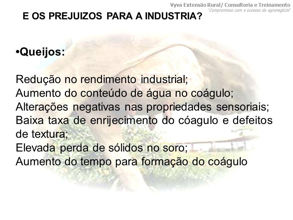 Queijos: Redução no rendimento industrial; Aumento do conteúdo de água no coágulo; Alterações negativas nas propriedades sensoriais; Baixa taxa de enr