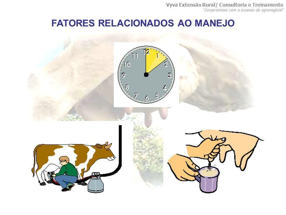 FATORES RELACIONADOS AO MANEJO Vyva Extensão Rural/ Consultoria e Treinamento Compromisso com o sucesso do agroneg ó cio