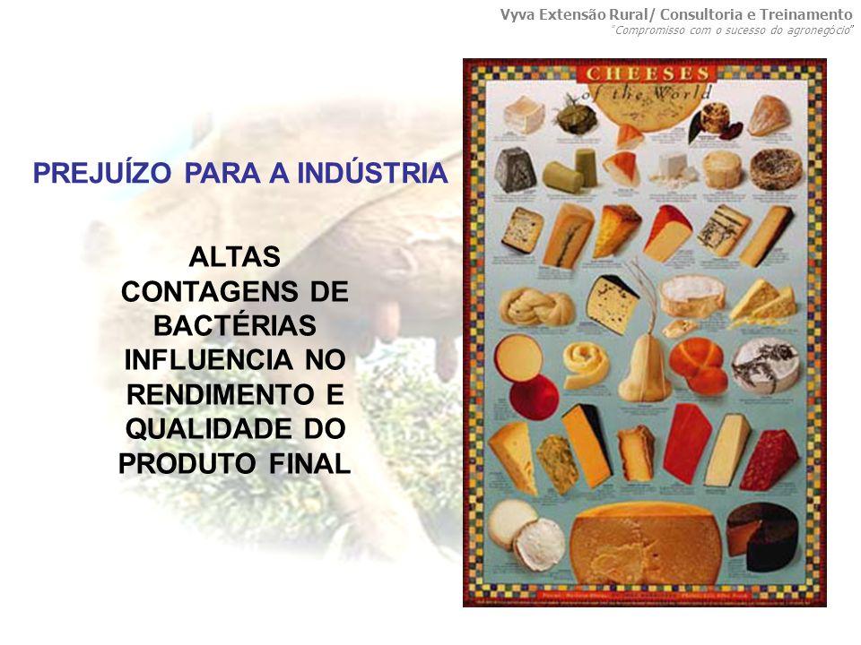 ALTAS CONTAGENS DE BACTÉRIAS INFLUENCIA NO RENDIMENTO E QUALIDADE DO PRODUTO FINAL PREJUÍZO PARA A INDÚSTRIA Vyva Extensão Rural/ Consultoria e Treina