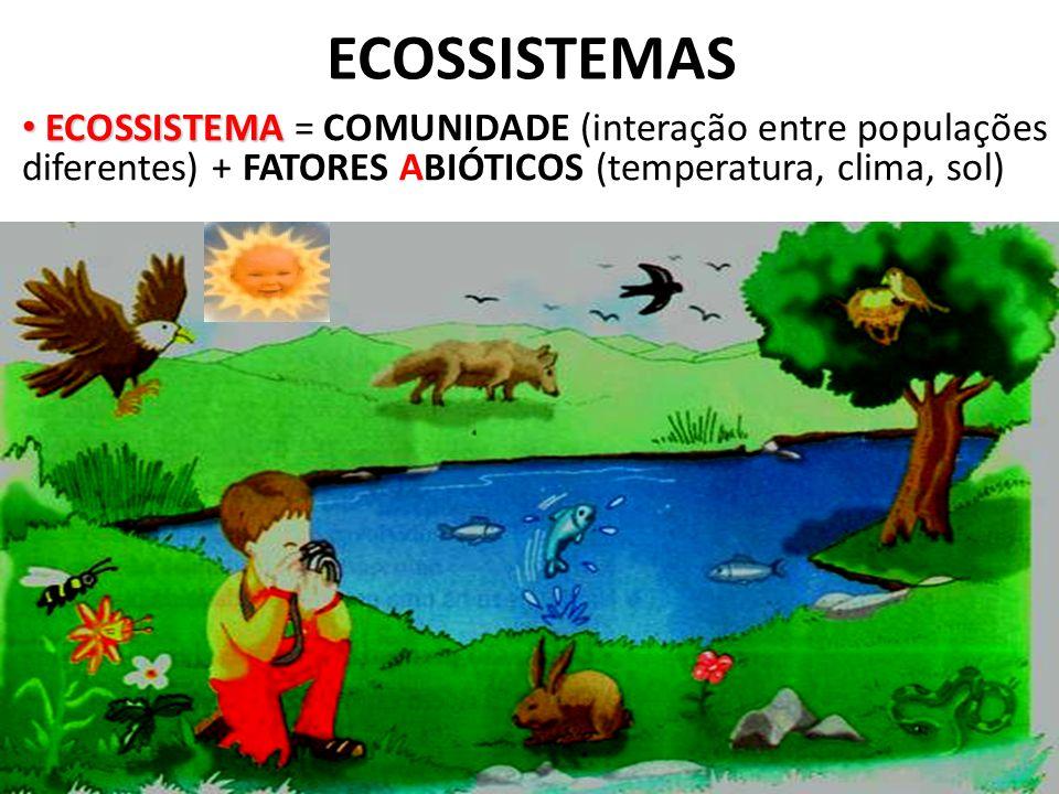 ECOSSISTEMAS ECOSSISTEMA ECOSSISTEMA = COMUNIDADE (interação entre populações diferentes) + FATORES ABIÓTICOS (temperatura, clima, sol)