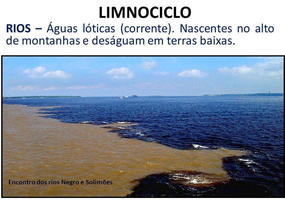 LIMNOCICLO RIOS – Águas lóticas (corrente). Nascentes no alto de montanhas e deságuam em terras baixas. Encontro dos rios Negro e Solimões
