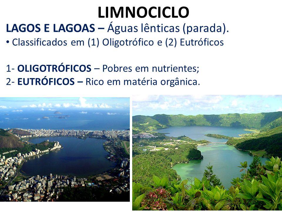 LIMNOCICLO LAGOS E LAGOAS – Águas lênticas (parada). Classificados em (1) Oligotrófico e (2) Eutróficos 1- OLIGOTRÓFICOS – Pobres em nutrientes; 2- EU