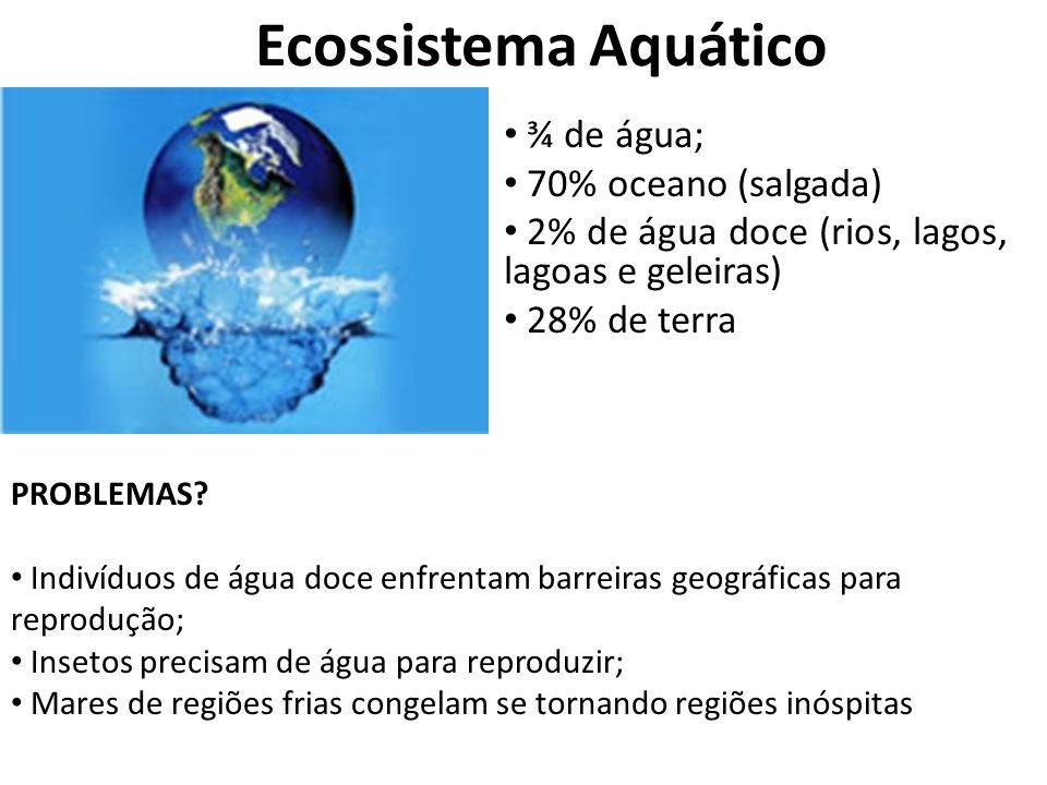 Ecossistema Aquático ¾ de água; 70% oceano (salgada) 2% de água doce (rios, lagos, lagoas e geleiras) 28% de terra PROBLEMAS? Indivíduos de água doce