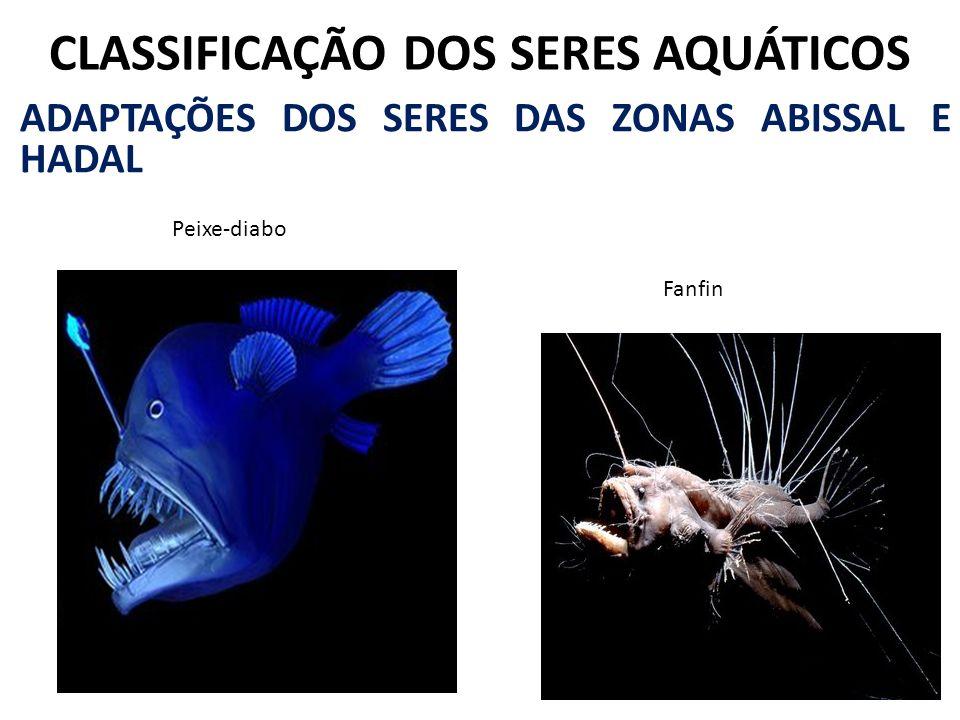 CLASSIFICAÇÃO DOS SERES AQUÁTICOS ADAPTAÇÕES DOS SERES DAS ZONAS ABISSAL E HADAL Peixe-diabo Fanfin