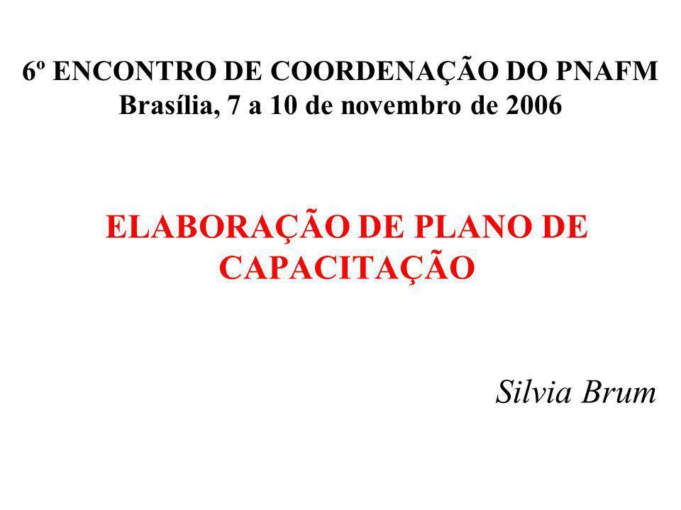 ELABORAÇÃO DE PLANO DE CAPACITAÇÃO 6º ENCONTRO DE COORDENAÇÃO DO PNAFM Brasília, 7 a 10 de novembro de 2006 Silvia Brum