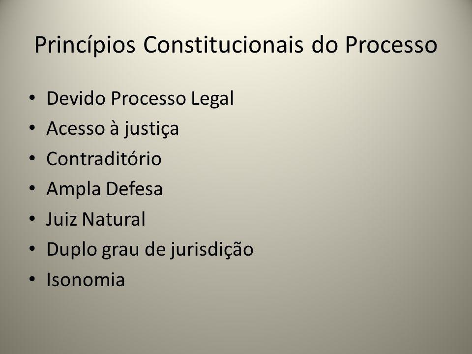 Princípios Constitucionais do Processo Devido Processo Legal Acesso à justiça Contraditório Ampla Defesa Juiz Natural Duplo grau de jurisdição Isonomi
