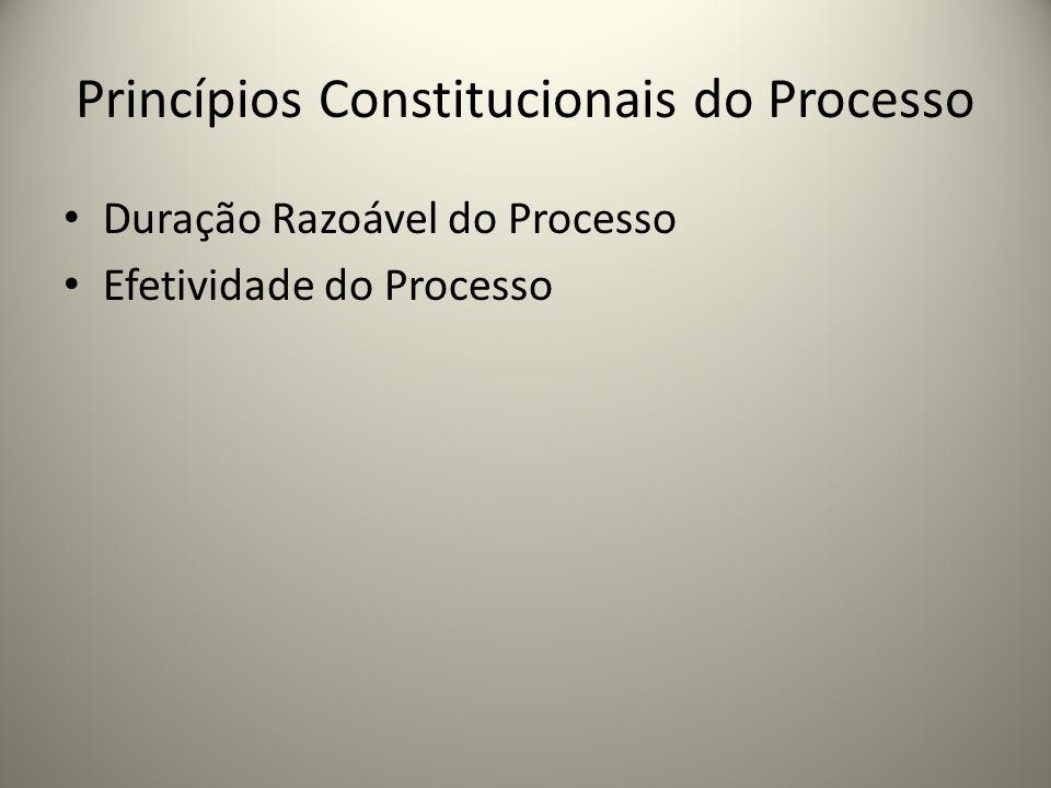 Princípios Constitucionais do Processo Duração Razoável do Processo Efetividade do Processo