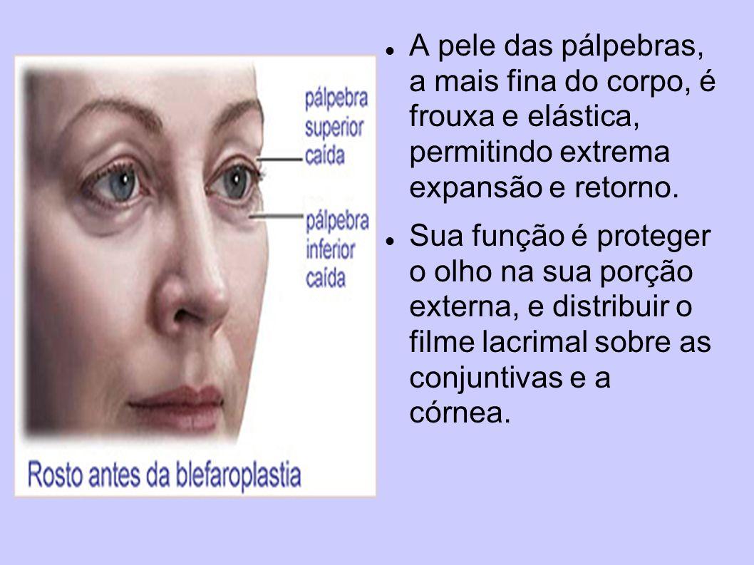 A pele das pálpebras, a mais fina do corpo, é frouxa e elástica, permitindo extrema expansão e retorno. Sua função é proteger o olho na sua porção ext