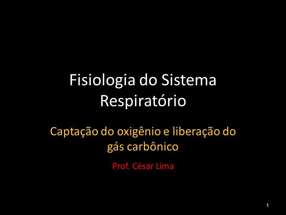 Fisiologia do Sistema Respiratório Captação do oxigênio e liberação do gás carbônico Prof. César Lima 1