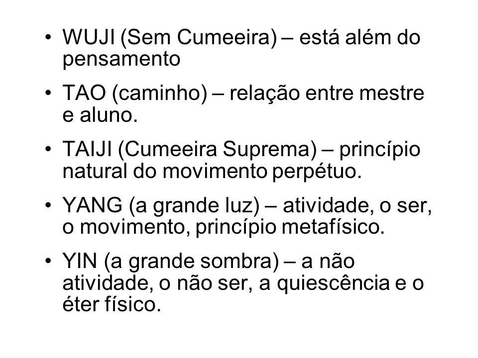 WUJI (Sem Cumeeira) – está além do pensamento TAO (caminho) – relação entre mestre e aluno. TAIJI (Cumeeira Suprema) – princípio natural do movimento