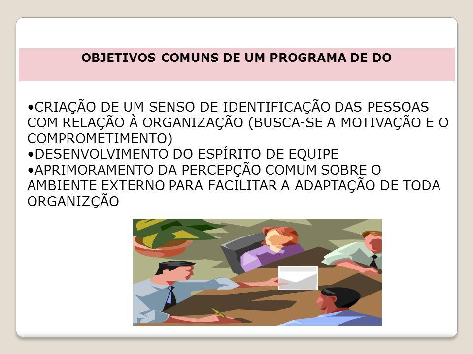 CRIAÇÃO DE UM SENSO DE IDENTIFICAÇÃO DAS PESSOAS COM RELAÇÃO À ORGANIZAÇÃO (BUSCA-SE A MOTIVAÇÃO E O COMPROMETIMENTO) DESENVOLVIMENTO DO ESPÍRITO DE E