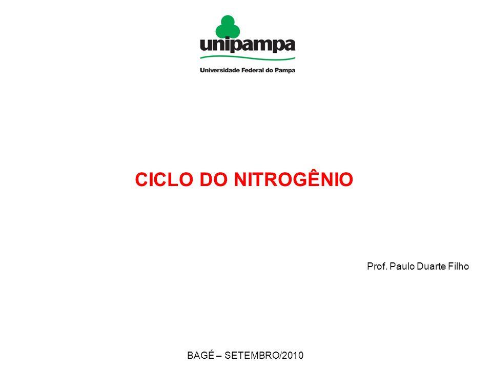 Prof. Paulo Duarte Filho BAGÉ – SETEMBRO/2010 CICLO DO NITROGÊNIO