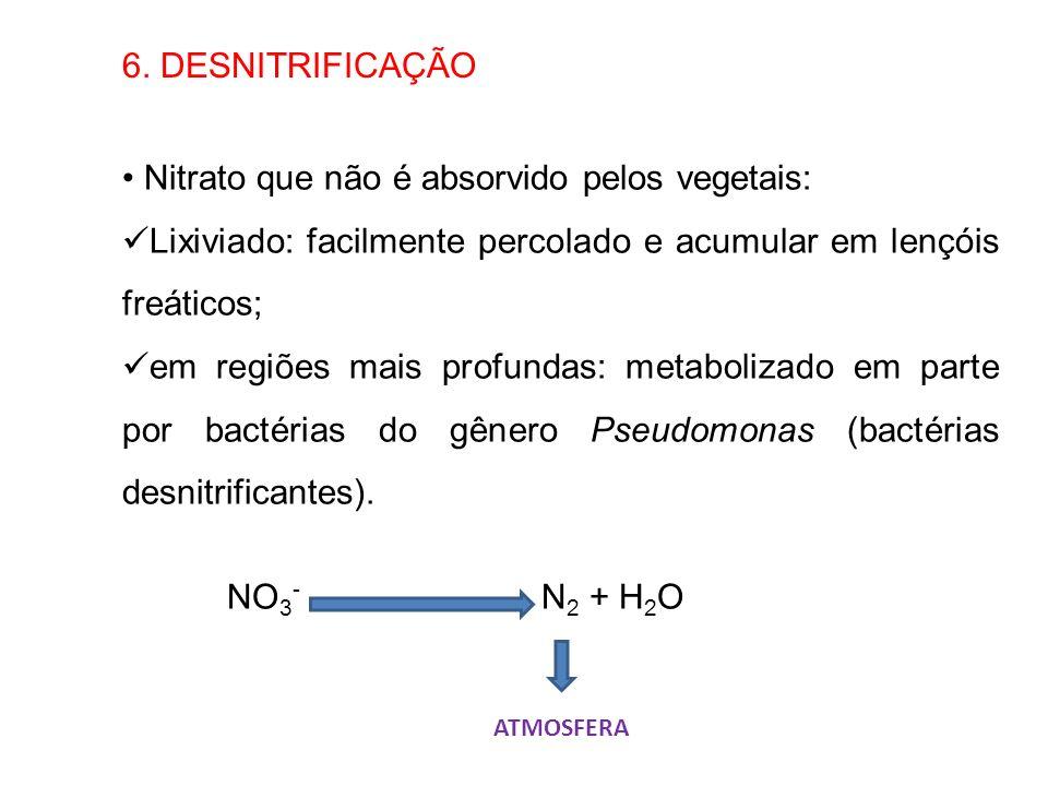 6. DESNITRIFICAÇÃO Nitrato que não é absorvido pelos vegetais: Lixiviado: facilmente percolado e acumular em lençóis freáticos; em regiões mais profun