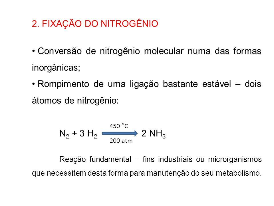 2. FIXAÇÃO DO NITROGÊNIO Conversão de nitrogênio molecular numa das formas inorgânicas; Rompimento de uma ligação bastante estável – dois átomos de ni