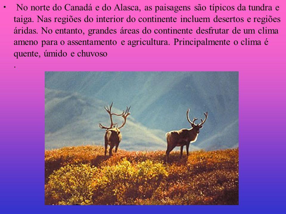 No norte do Canadá e do Alasca, as paisagens são típicos da tundra e taiga. Nas regiões do interior do continente incluem desertos e regiões áridas. N