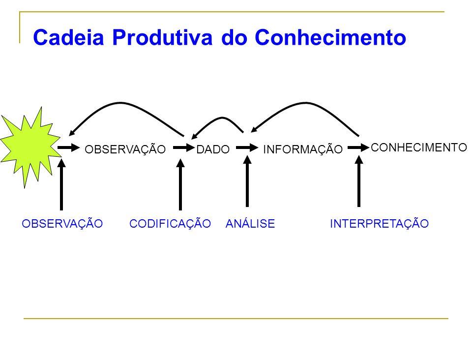 Cadeia Produtiva do Conhecimento OBSERVAÇÃO CONHECIMENTO DADOINFORMAÇÃO OBSERVAÇÃOCODIFICAÇÃOANÁLISEINTERPRETAÇÃO