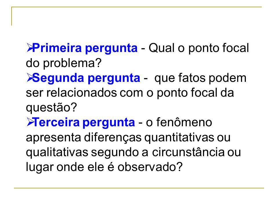 Primeira pergunta - Qual o ponto focal do problema? Segunda pergunta - que fatos podem ser relacionados com o ponto focal da questão? Terceira pergunt