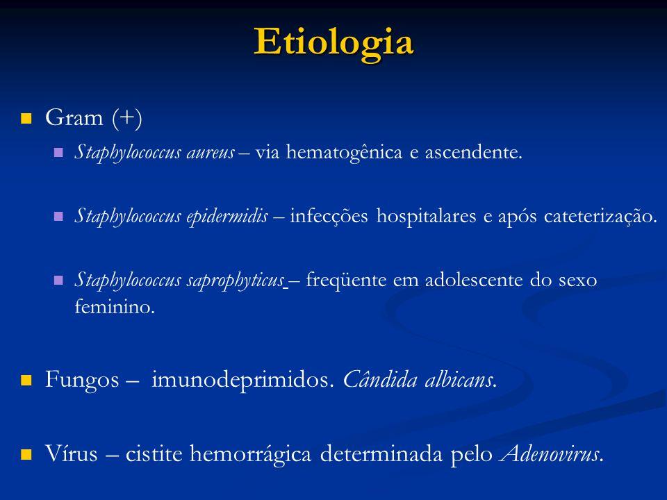 Etiologia Gram (+) Staphylococcus aureus – via hematogênica e ascendente. Staphylococcus epidermidis – infecções hospitalares e após cateterização. St