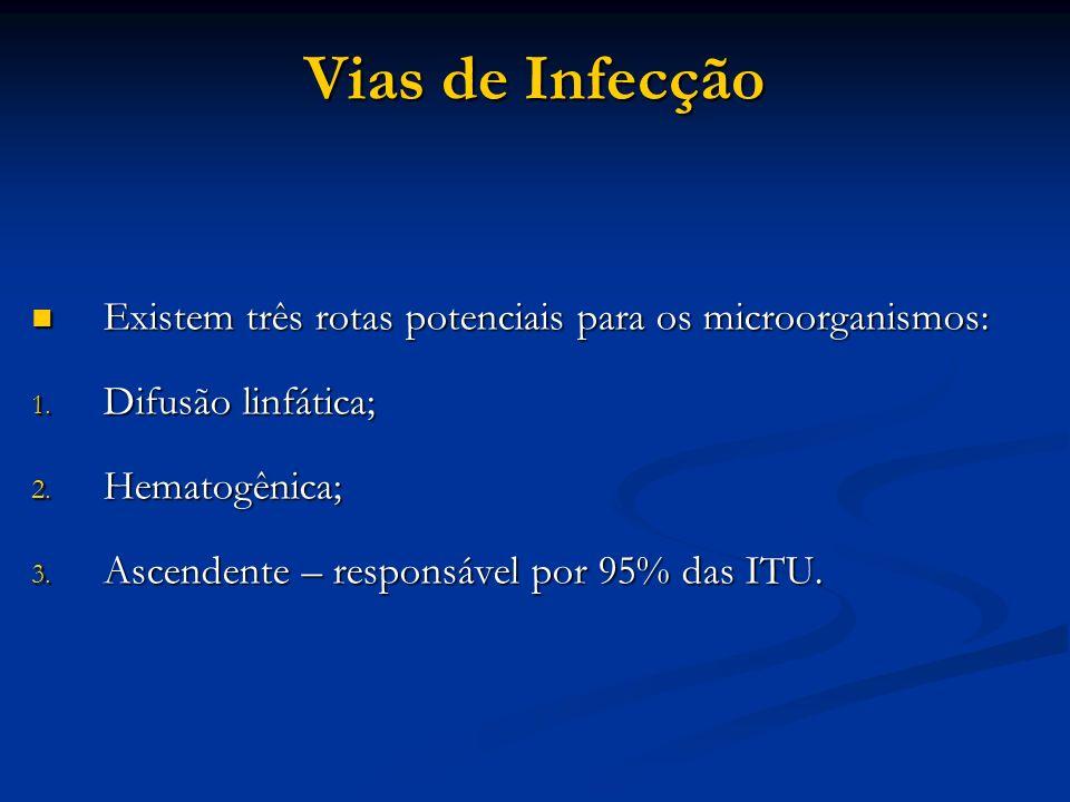 Vias de Infecção Existem três rotas potenciais para os microorganismos: Existem três rotas potenciais para os microorganismos: 1. Difusão linfática; 2