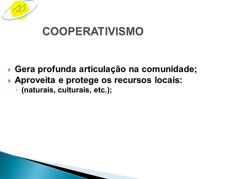 Sistema baseado em princípios reconhecidos mundialmente; Instrumento de promoção do desenvolvimento sustentável; Forma de estruturação do capital soci