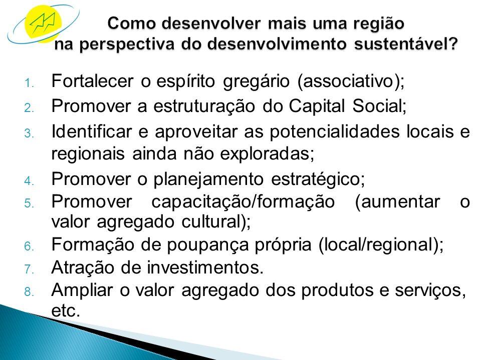 a) promover a inclusão social; b) geração e distribuição de renda; c) Substituir as políticas públicas (governos). Formalidade do mercado; Retorno do