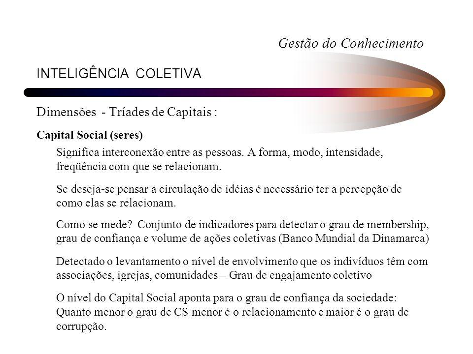 INTELIGÊNCIA COLETIVA Dimensões - Tríades de Capitais : Capital Social (seres) Significa interconexão entre as pessoas. A forma, modo, intensidade, fr