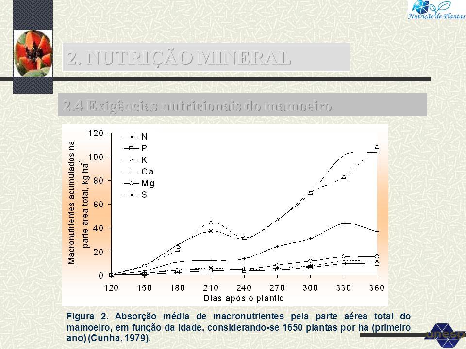 Figura 2. Absorção média de macronutrientes pela parte aérea total do mamoeiro, em função da idade, considerando-se 1650 plantas por ha (primeiro ano)