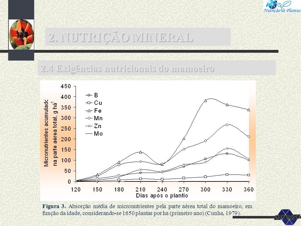 Figura 3. Absorção média de micronutrientes pela parte aérea total do mamoeiro, em função da idade, considerando-se 1650 plantas por ha (primeiro ano)
