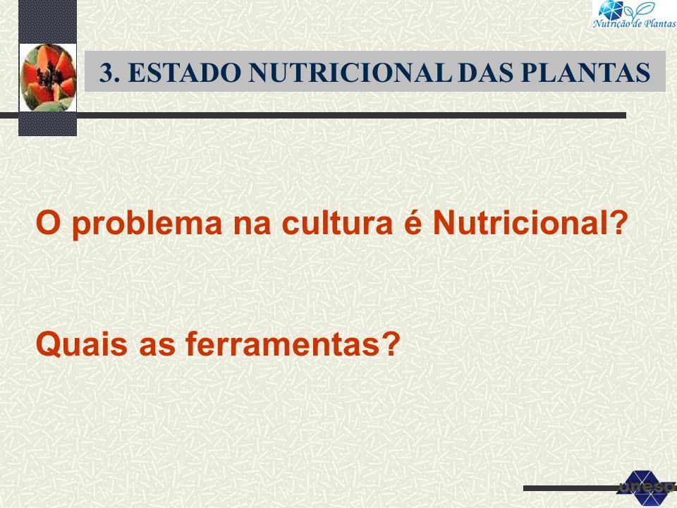 3. ESTADO NUTRICIONAL DAS PLANTAS O problema na cultura é Nutricional? Quais as ferramentas?