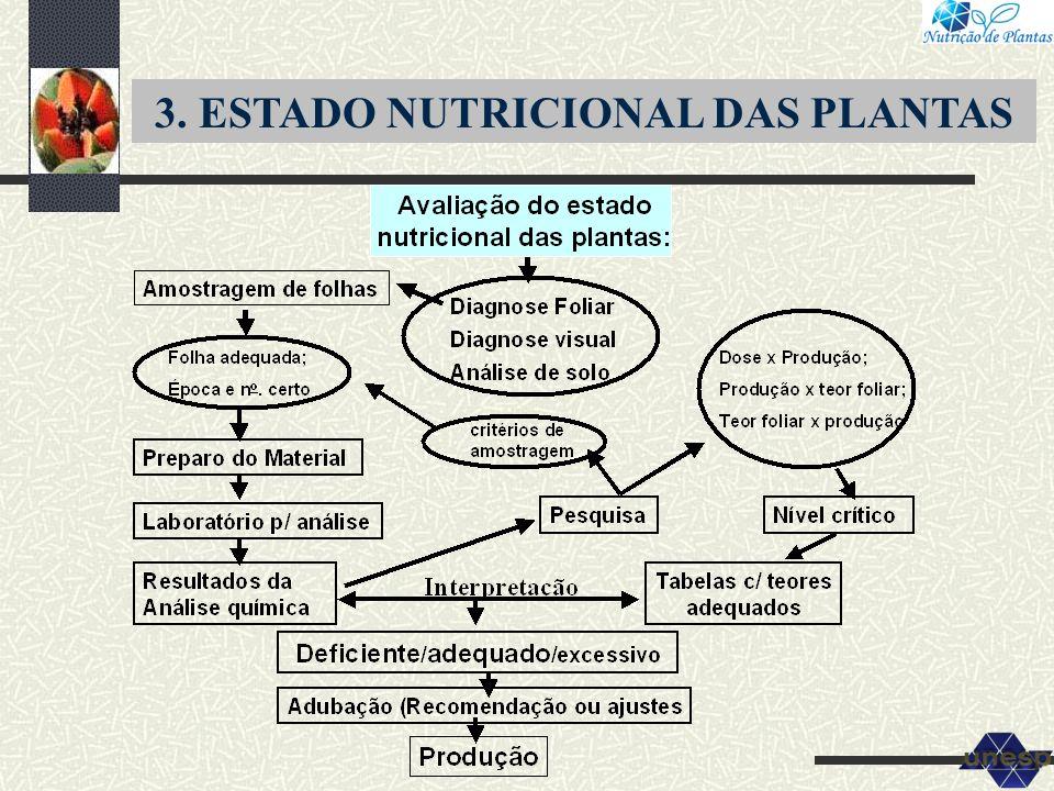 3. ESTADO NUTRICIONAL DAS PLANTAS