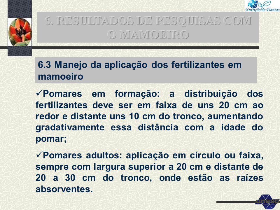 6.3 Manejo da aplicação dos fertilizantes em mamoeiro Pomares em formação: a distribuição dos fertilizantes deve ser em faixa de uns 20 cm ao redor e