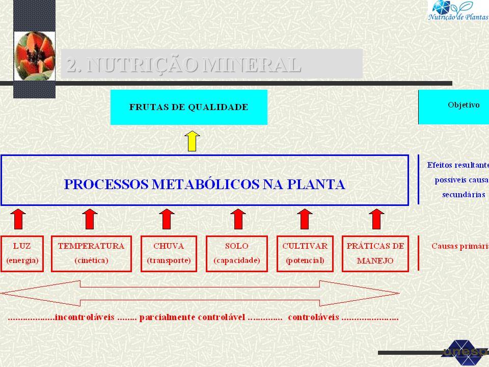 5.4 Micronutrientes em mamoeiro Classes de solo B Cu Fe Mn Zn mg dm -3 Baixo <0,20 <0,30 <5 <1,5 <0,7 Médio 0,20-0,60 0,3-1,0 5-12 1,5-5,0 0,7-1,5 Alto >0,60 >1,0 >12 >5,0 >1,5 Tabela 9.