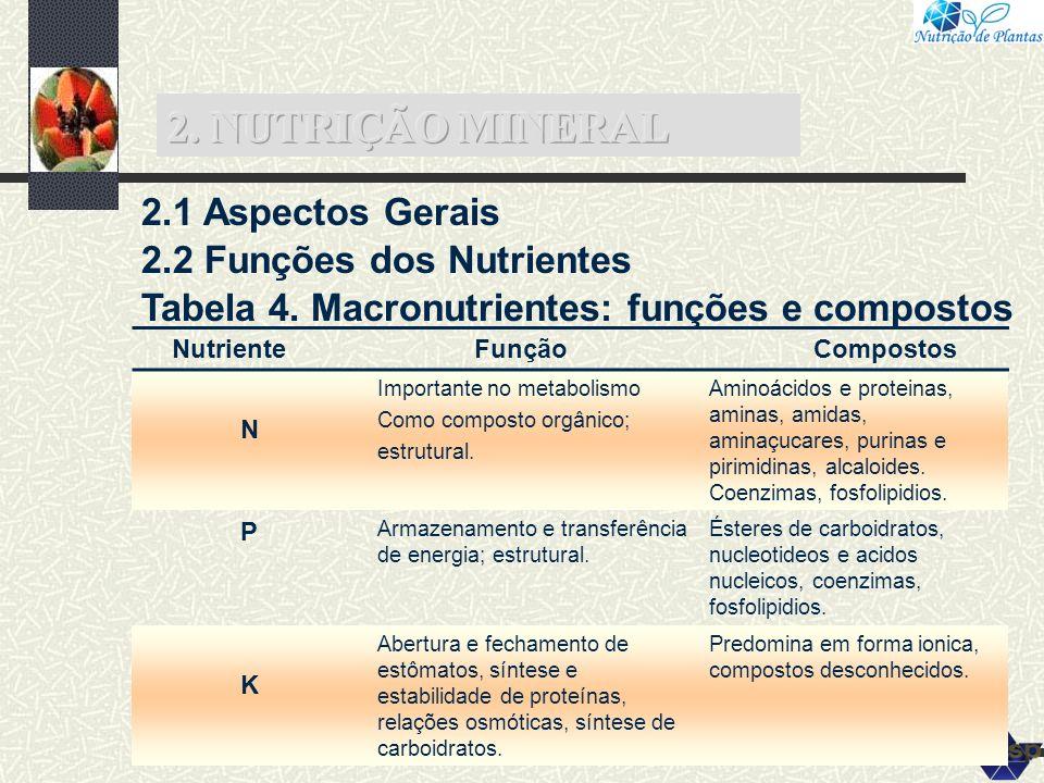 2.1 Aspectos Gerais 2.2 Funções dos Nutrientes Tabela 4. Macronutrientes: funções e compostos Nutriente Função Compostos N Importante no metabolismo C