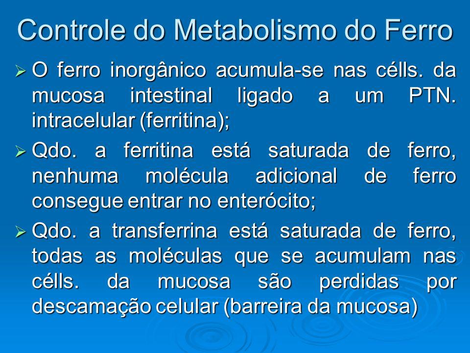 Controle do Metabolismo do Ferro O ferro inorgânico acumula-se nas célls. da mucosa intestinal ligado a um PTN. intracelular (ferritina); O ferro inor
