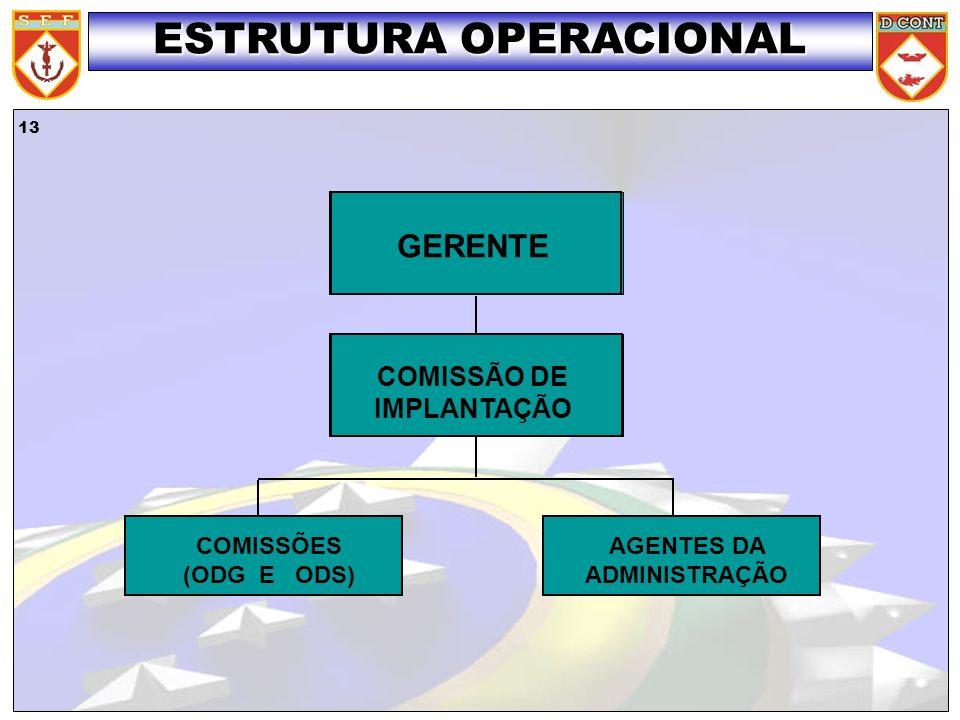 13 GERENTE COMISSÃO DE IMPLANTAÇÃO COMISSÕES (ODG E ODS) AGENTES DA ADMINISTRAÇÃO ESTRUTURA OPERACIONAL