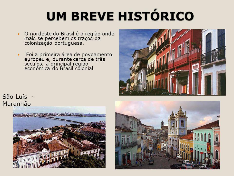UM BREVE HISTÓRICO O nordeste do Brasil é a região onde mais se percebem os traços da colonização portuguesa. Foi a primeira área de povoamento europe