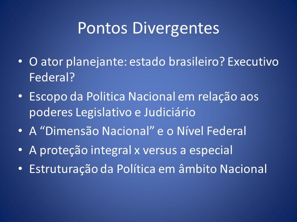 Pontos Divergentes O ator planejante: estado brasileiro? Executivo Federal? Escopo da Politica Nacional em relação aos poderes Legislativo e Judiciári