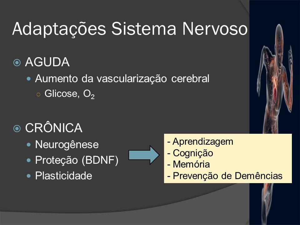 Adaptações Sistema Nervoso AGUDA Aumento da vascularização cerebral Glicose, O 2 CRÔNICA Neurogênese Proteção (BDNF) Plasticidade - Aprendizagem - Cog