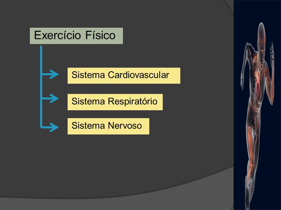 Exercício Físico Adaptações AgudasAdaptações Crônicas Situação de estresse que retira o organismo da homeostase Tipo de exercício (estático, dinâmico, aeróbio, anaeróbio), intensidade, duração, frequência