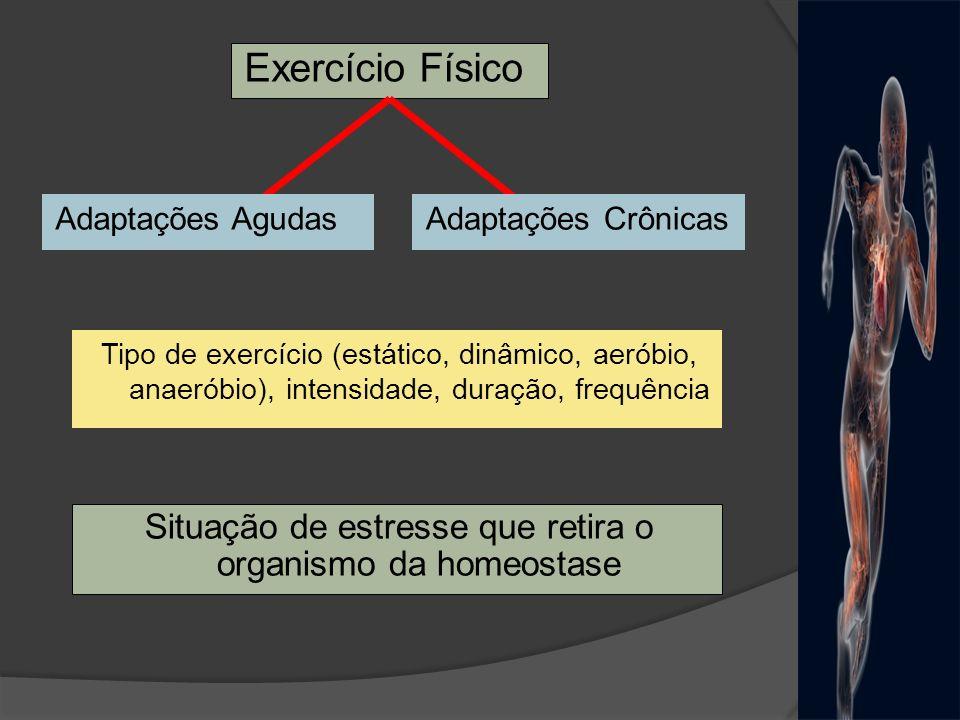 Exercício Físico Adaptações AgudasAdaptações Crônicas Situação de estresse que retira o organismo da homeostase Tipo de exercício (estático, dinâmico,