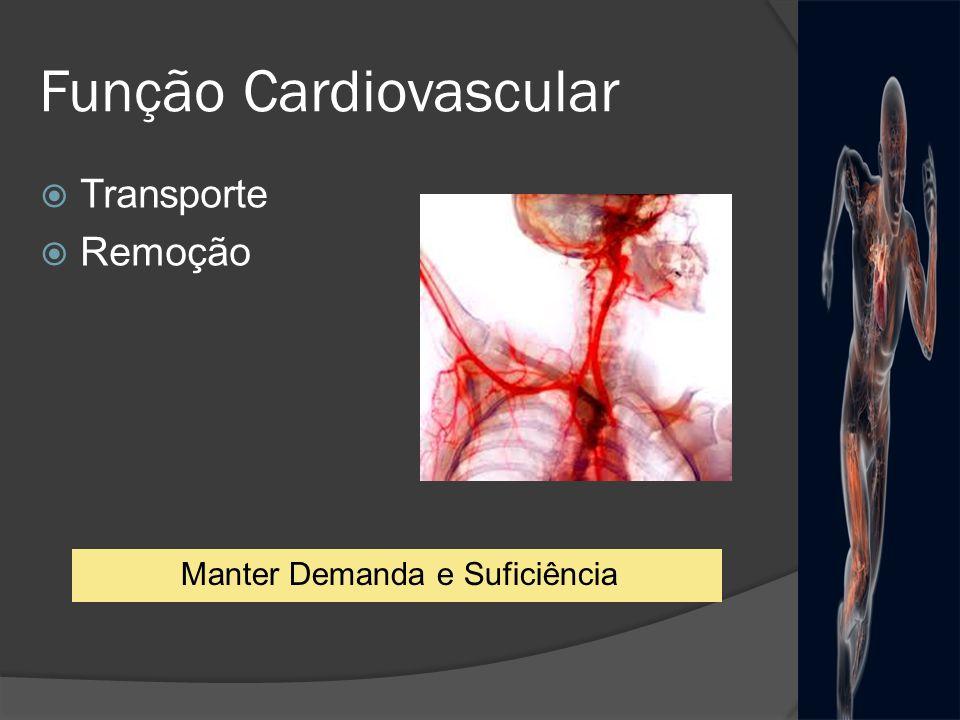 Exercício estático - Isométrico Contração muscular: Obstrução mecânica do fluxo sanguíneo Metabólitos produzidos = atividade simpática FC PA ou = Retorno Venoso Adaptações Agudas