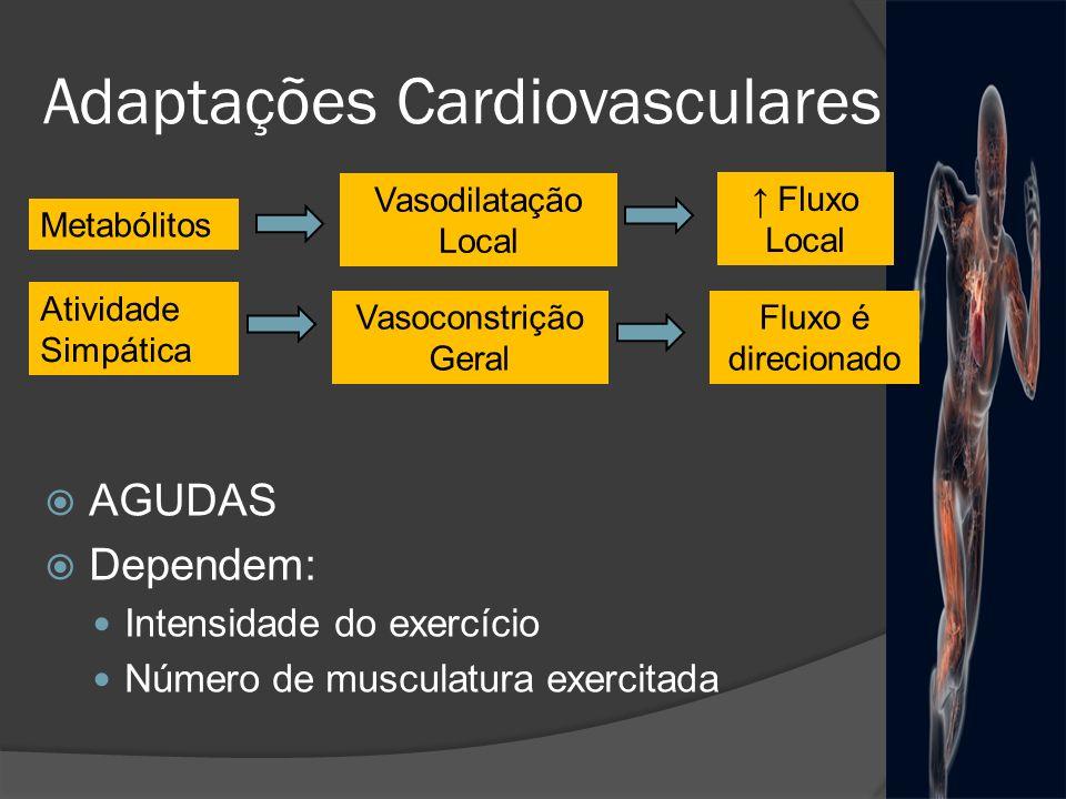 Adaptações Cardiovasculares AGUDAS Dependem: Intensidade do exercício Número de musculatura exercitada Vasodilatação Local Metabólitos Fluxo Local Ati
