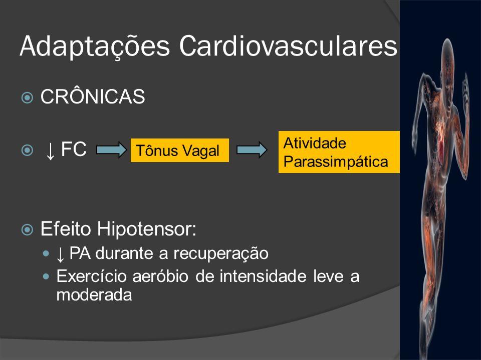 Adaptações Cardiovasculares CRÔNICAS FC Efeito Hipotensor: PA durante a recuperação Exercício aeróbio de intensidade leve a moderada Tônus Vagal Ativi