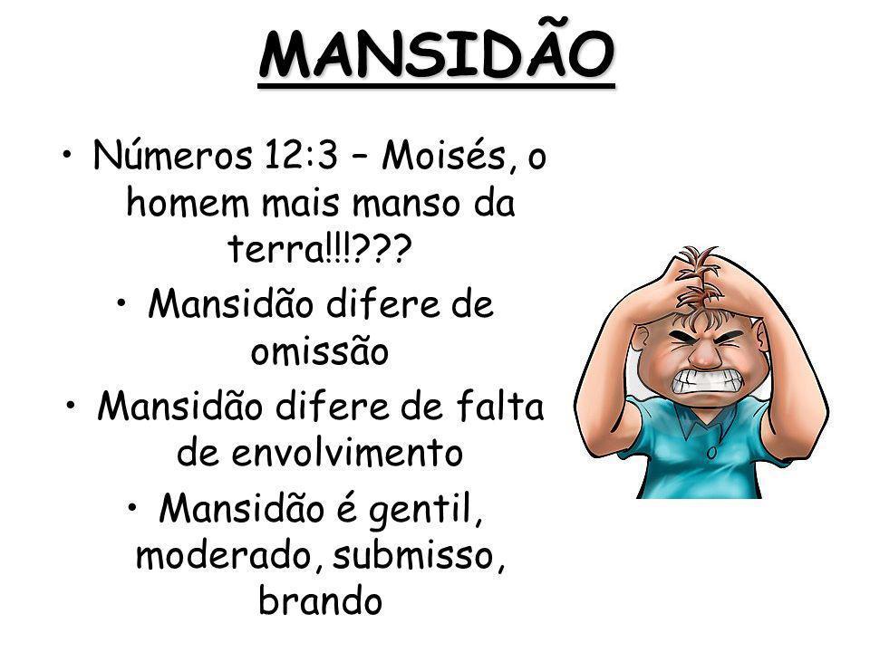 MANSIDÃO Números 12:3 – Moisés, o homem mais manso da terra!!!??? Mansidão difere de omissão Mansidão difere de falta de envolvimento Mansidão é genti
