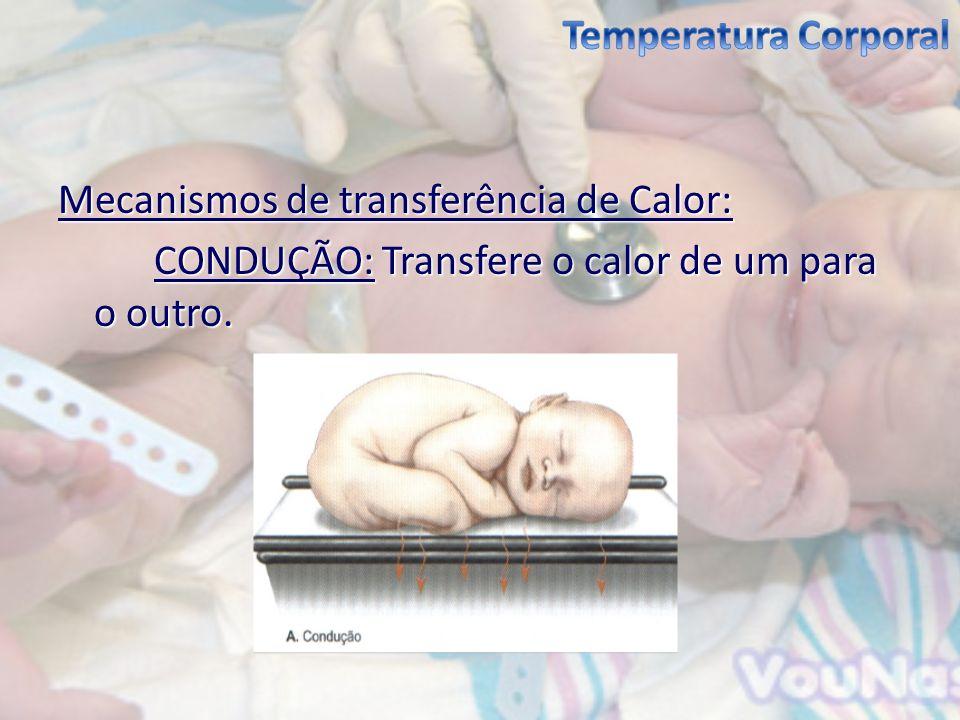 Mecanismos de transferência de Calor: CONDUÇÃO: Transfere o calor de um para o outro.