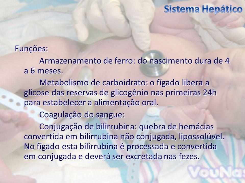 Funções: Armazenamento de ferro: do nascimento dura de 4 a 6 meses. Metabolismo de carboidrato: o fígado libera a glicose das reservas de glicogênio n