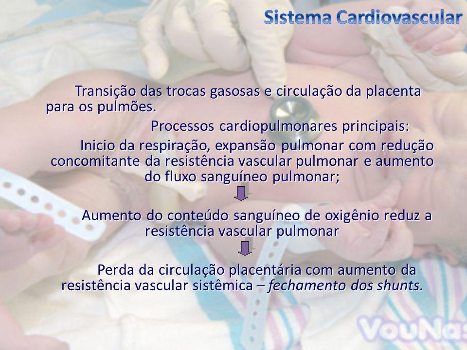 Transição das trocas gasosas e circulação da placenta para os pulmões. Processos cardiopulmonares principais: Inicio da respiração, expansão pulmonar