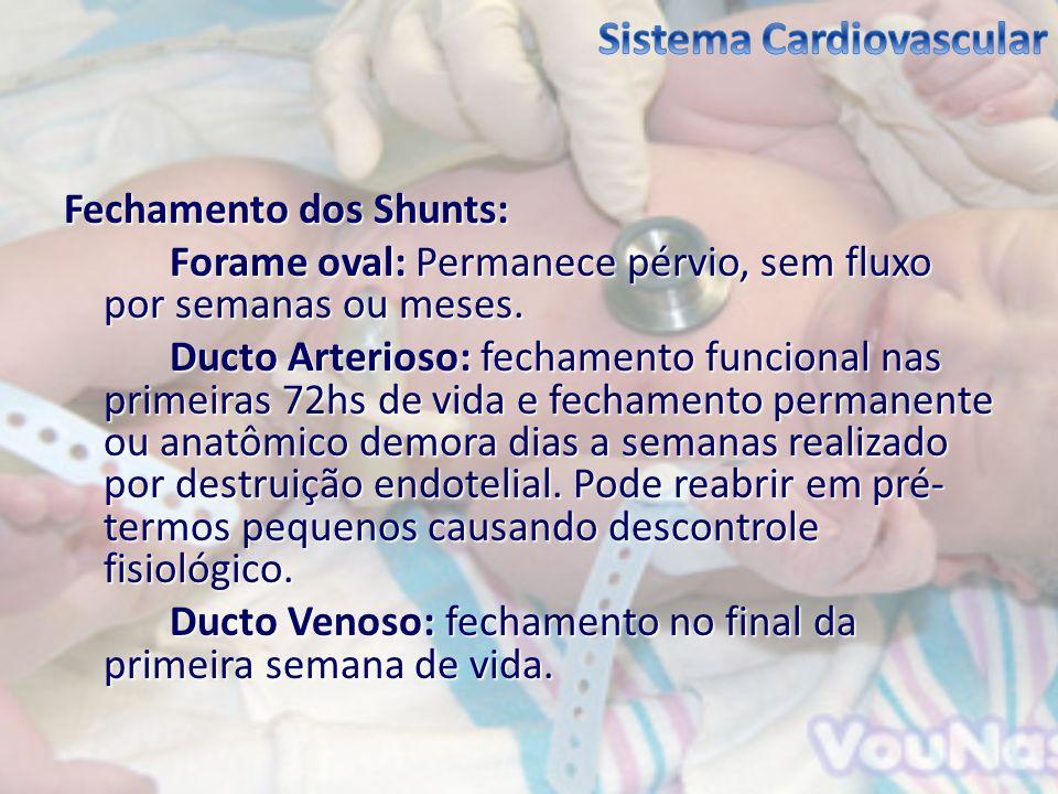 Fechamento dos Shunts: Forame oval: Permanece pérvio, sem fluxo por semanas ou meses. Ducto Arterioso: fechamento funcional nas primeiras 72hs de vida