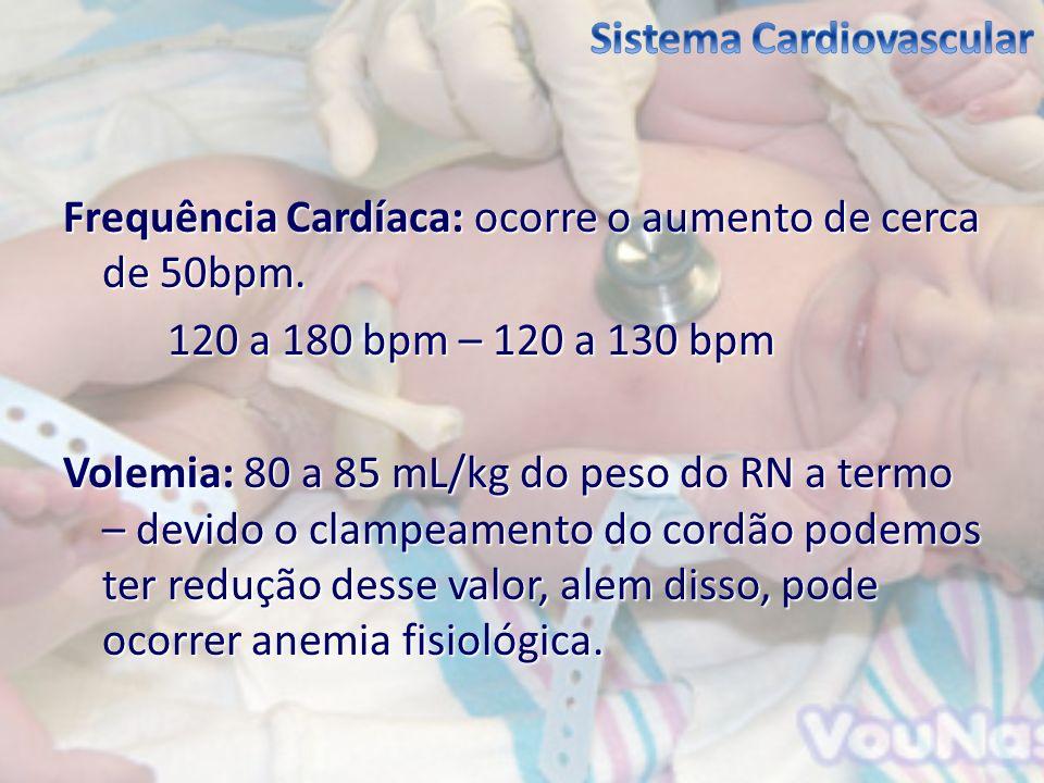 Frequência Cardíaca: ocorre o aumento de cerca de 50bpm. 120 a 180 bpm – 120 a 130 bpm Volemia: 80 a 85 mL/kg do peso do RN a termo – devido o clampea